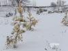Zima na strelnici